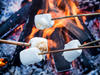 Marshmallows grillen