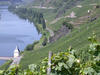 Wein an der Mosel: Im Land des Rieslings  - mosel