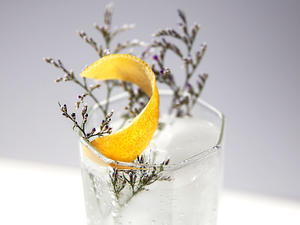 Gin Tonic mit Garnish